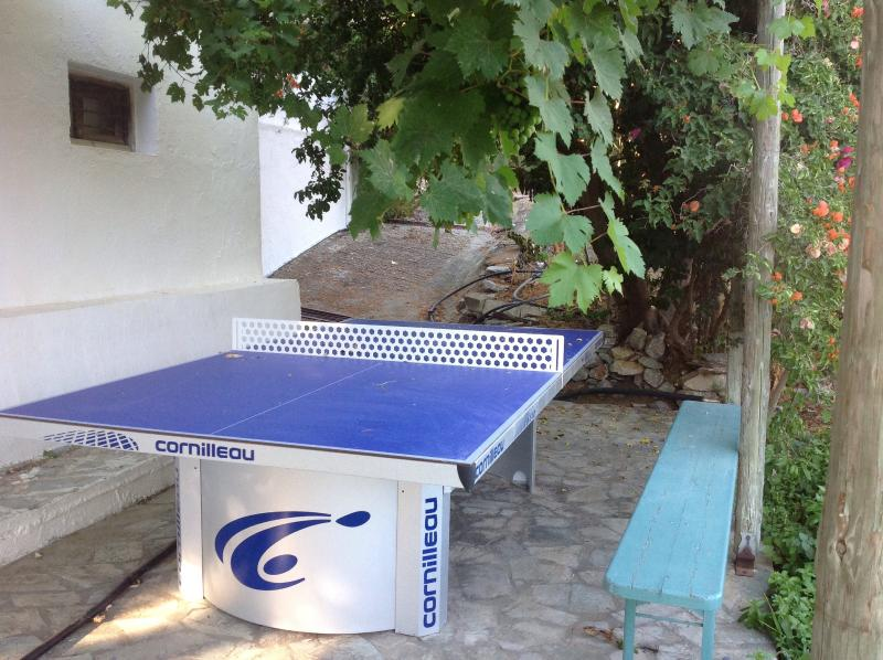 Hours of fun with table tennis