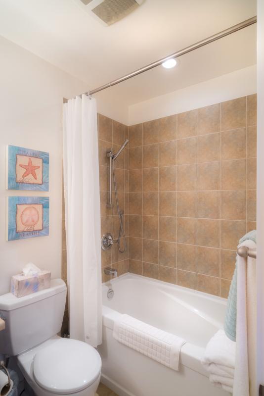 large bathtub & designer shower fittings