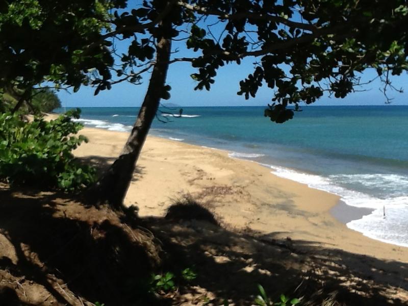 Life a beach