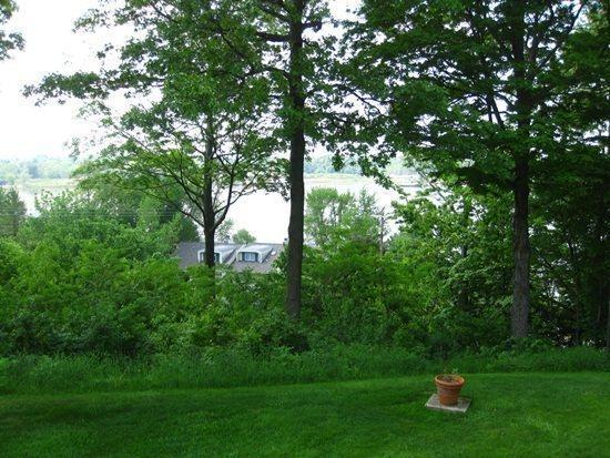 View of Lake Kalamazoo Through The Trees