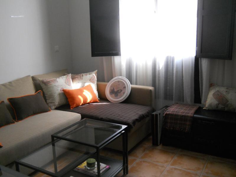 Salle de séjour avec canapé-lit et TV