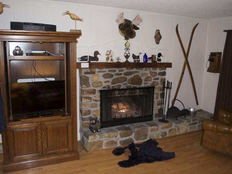 Lyons Den, holiday rental in Beech Mountain