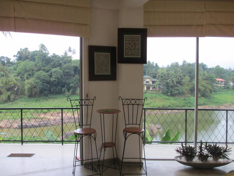 River view from living area