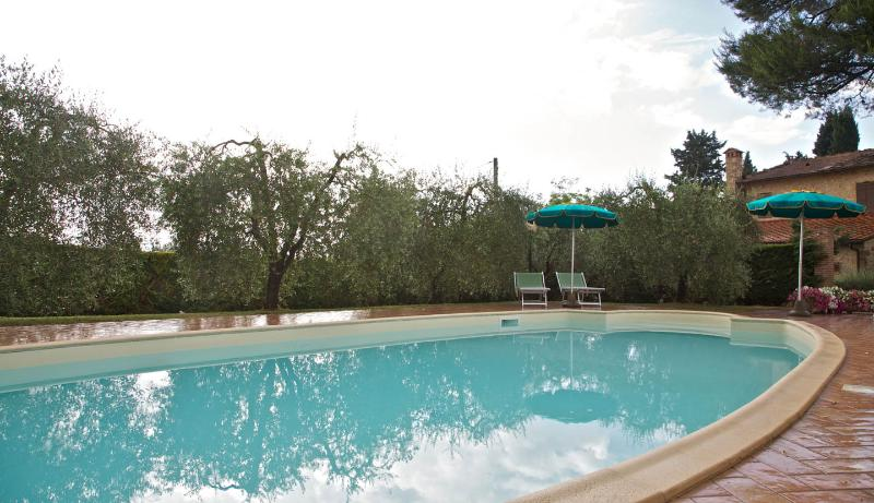 Noce, vacation rental in Castellina Scalo