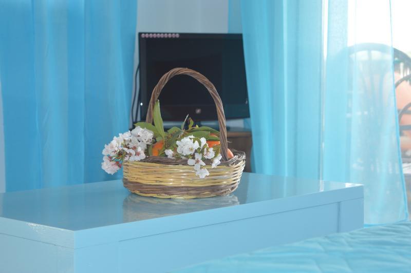 2 Villa Dimitra !!!, vacation rental in Koroni