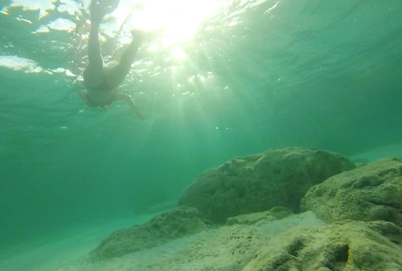 O andate a fare snorkeling - questa foto scattata al Tyne Beach nel sole del pomeriggio
