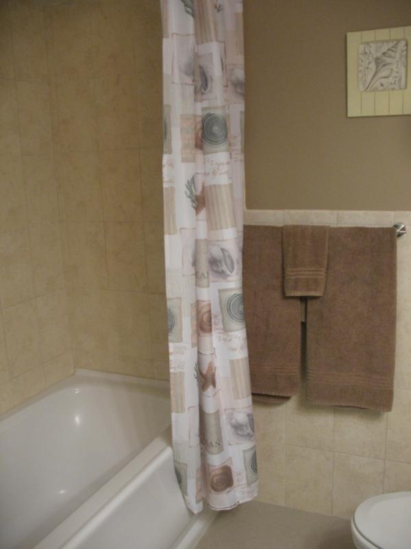 Forse si può prendere una doccia o un bagno nel bagno principale