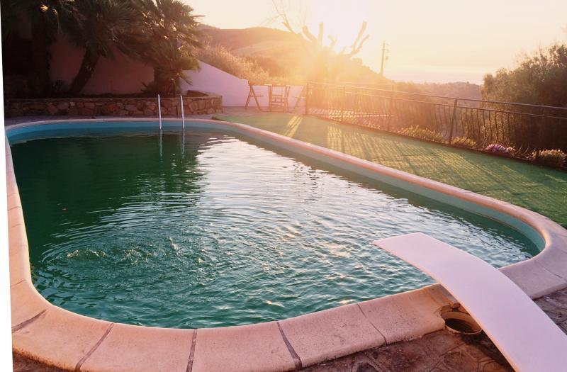 utsikt från poolen