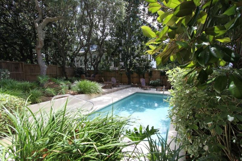 Pool is Surrounded by Lush Vegetation