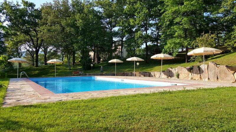 Holiday House Le Selvole, location de vacances à Volpaia
