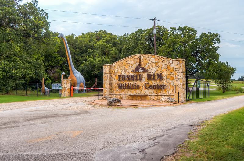 Fossil Rim Wildlife Center está cerca!