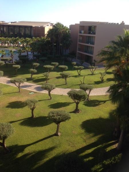 Beautiful Garden view from Balcony