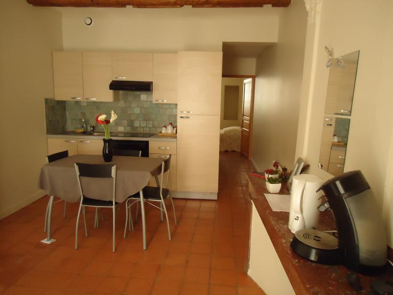 T2 downtown of carcassonne, vacation rental in Carcassonne Center