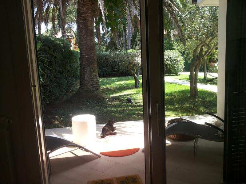 Vista dalla sala sul patio minore