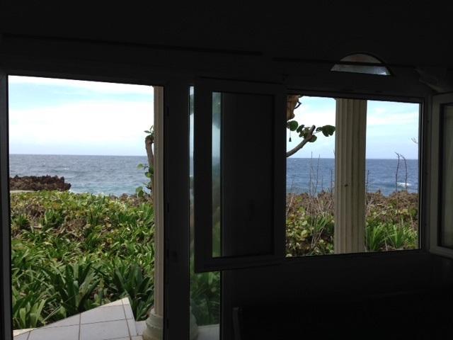 View from living door and window