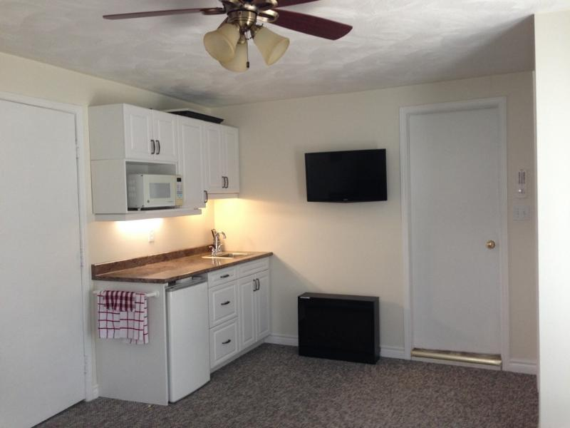 Mini kitchen in Parkview suite