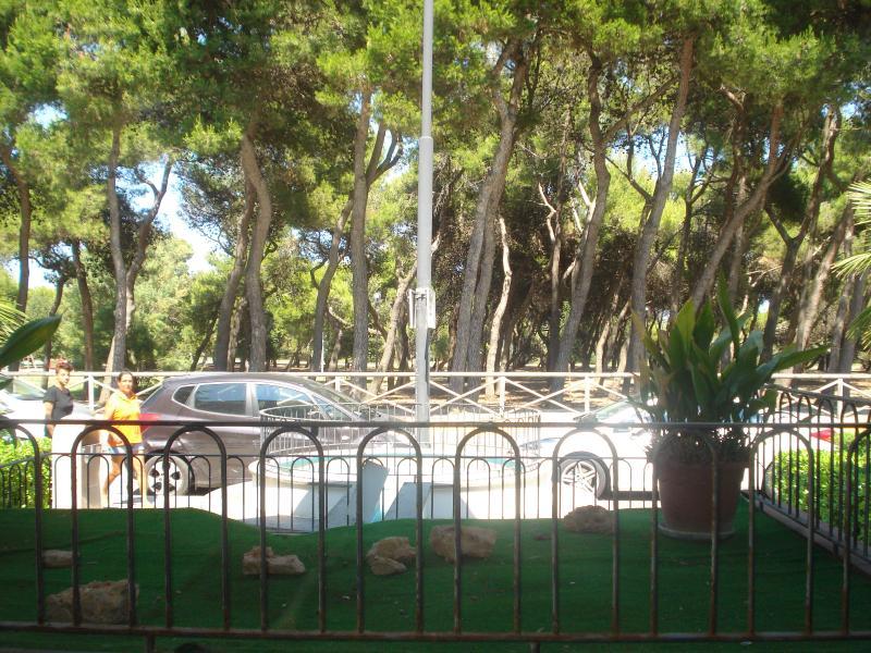 appartamento a 50 mt dal mare difronte alla pineta, casa vacanza a Porto Sant'Elpidio