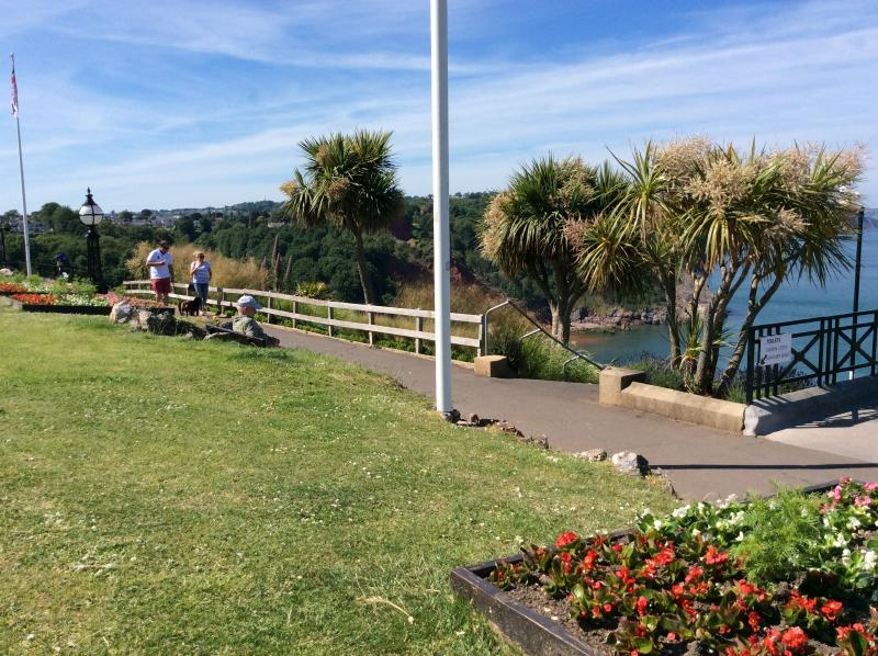 Babbacombe Downs - an uplifitng viewpoint popular with visitors, dogwalkers and locals.