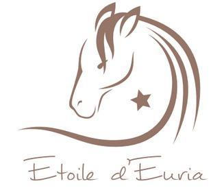 Etoile d'Euria- Chambre Euria, alquiler vacacional en Montfuron