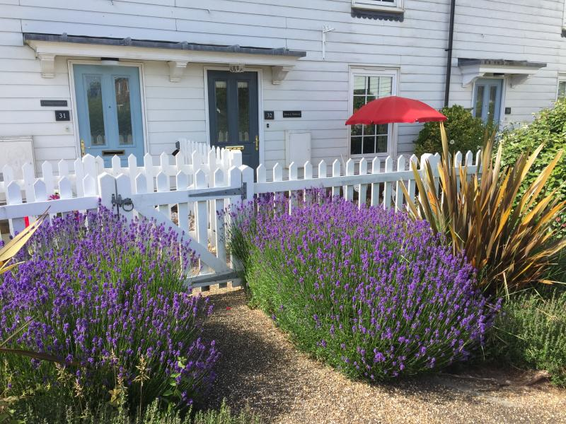 Beach Retreat, holiday rental in Rye