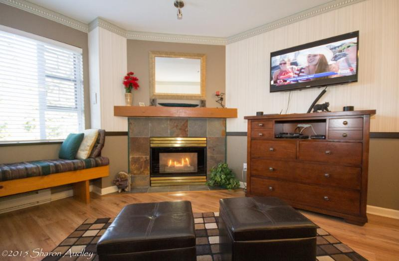 Beautiful gas fireplace in the comfortable livingroom