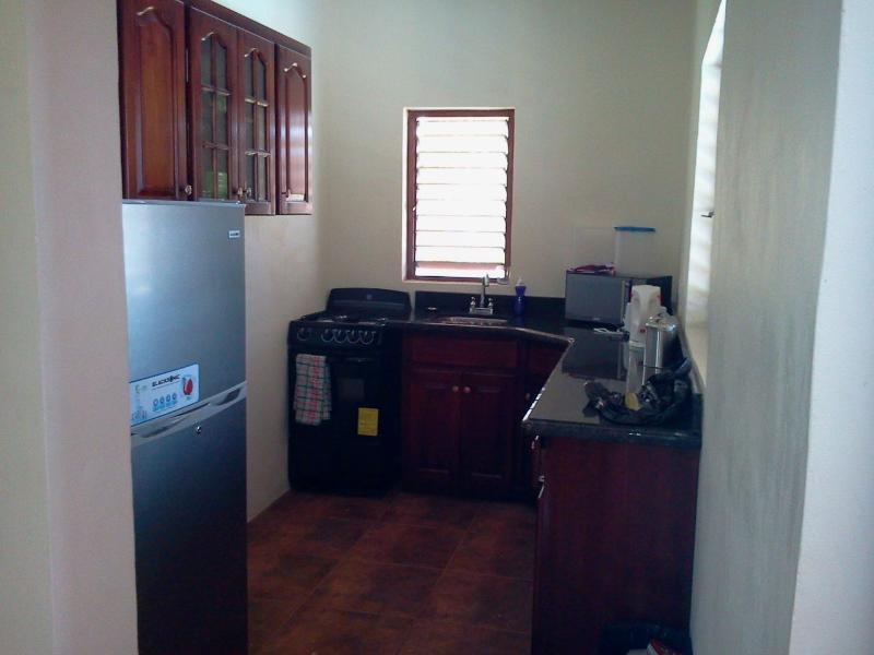 Stijlvolle en volledig uitgeruste keuken met granieten werkbladen.