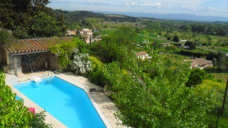 The Winegrower's House, holiday rental in Villarzel-du-Razes