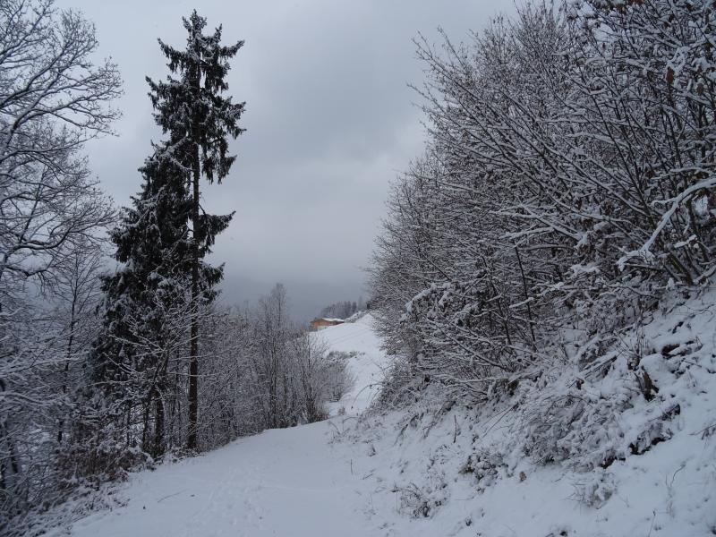 A wonderful winter wonderland scene from one of the many walks accessible from the house