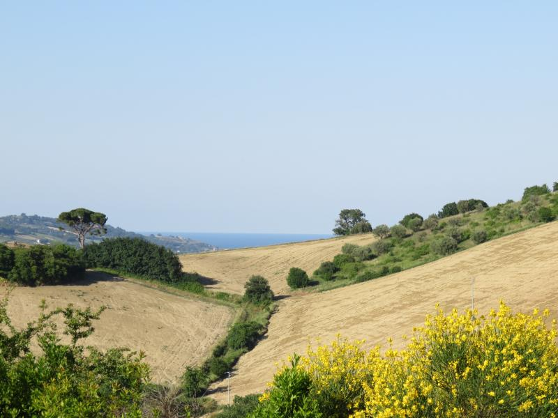 The sea is visible from the apartment windows across the stunning countryside