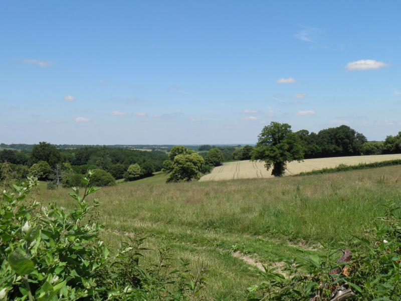 Vue du gîte dans les champs entourant notre grange