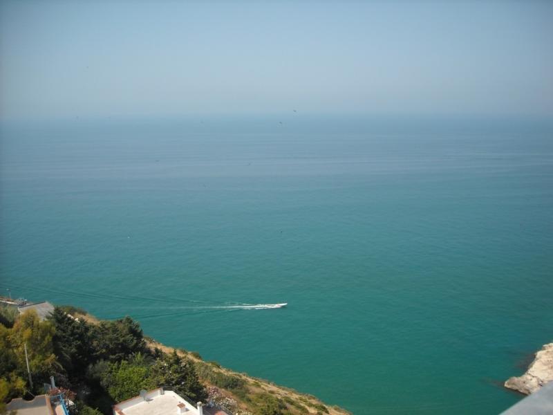 dal porto puoi partire per una splendida escursione per le Isole Tremiti