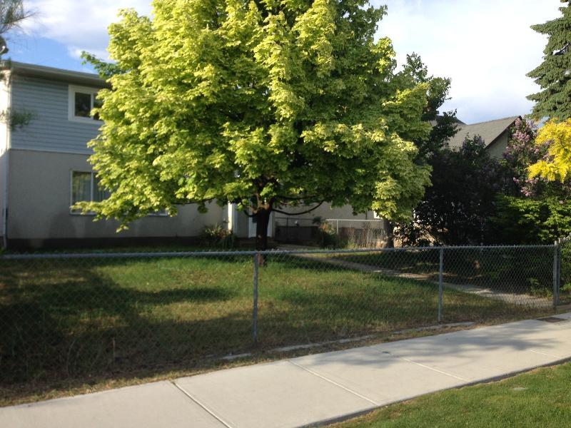 Patio delantero está bien a la sombra del gran árbol de arce. Gran lugar para sentarse.