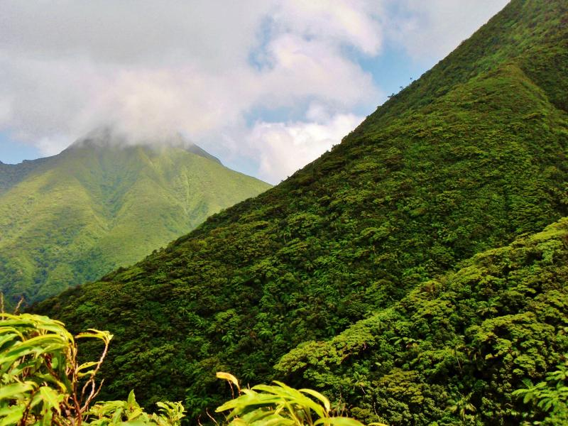 The lush mountains of St. Kitts with excellent hiking trails.