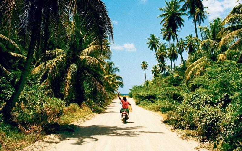 Friendly local traffic on a Nevis beach road.