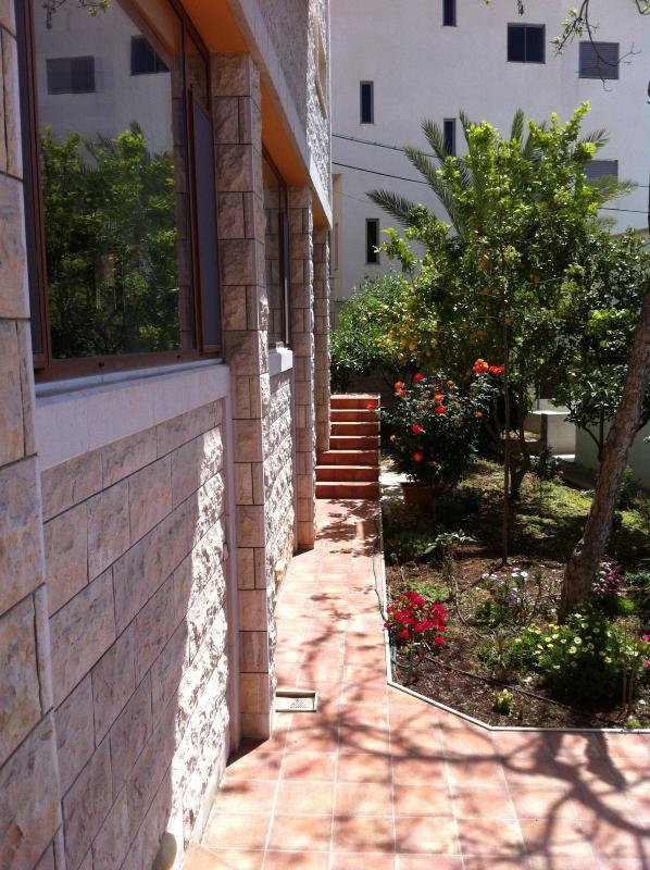 Garden in the entrance