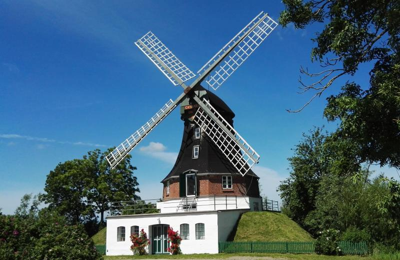Windmühle Catharina, holiday rental in Hennstedt