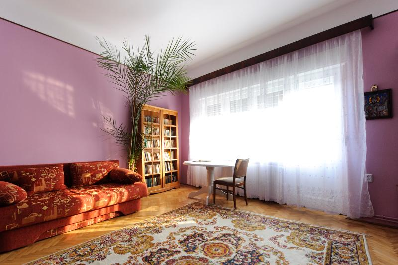 Charming apartment downtown, vacation rental in Poiana Brasov