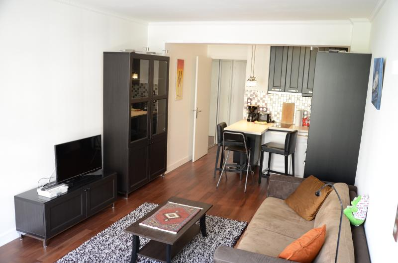 Main room (2/2) : one bed, one sofa-bed, HD TV, wireless net, double glazing window, bookcase
