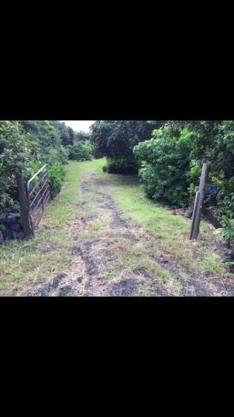 Hale Punahele, vacation rental in Pahala