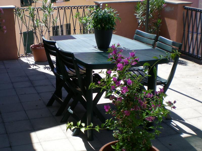 terrasse équipée avec table et chaises