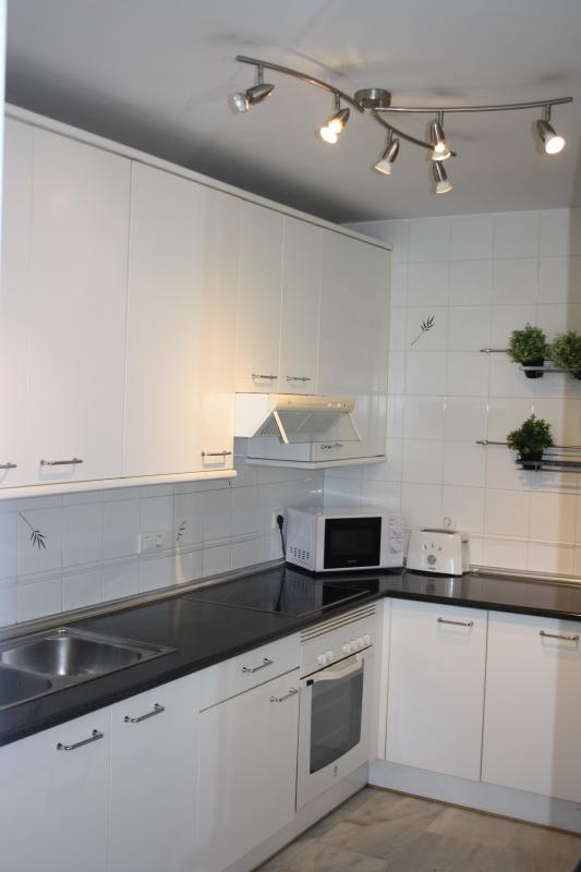 Fully equipped kitchen with Microwave, kettle, fridge etc...