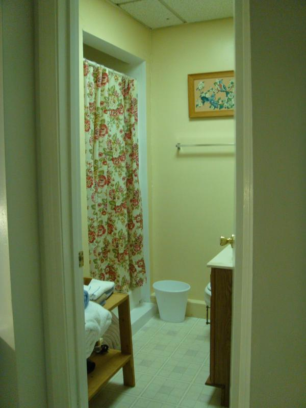 Bathroom with shower, sink and toilet. Shampoo, conditioner, body wash, towels, hair dryer provided.