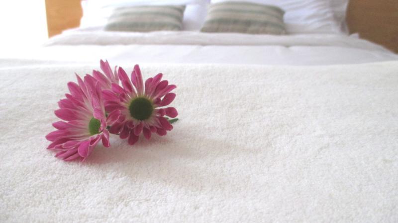1 CedarCats Short Stay Apartments, holiday rental in Cartago