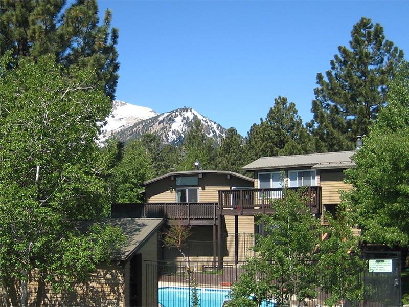 Timberline and Mammoth Mountain