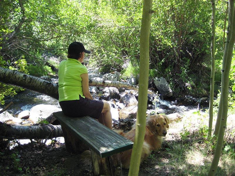 Meditation Bench next to McGee Creek
