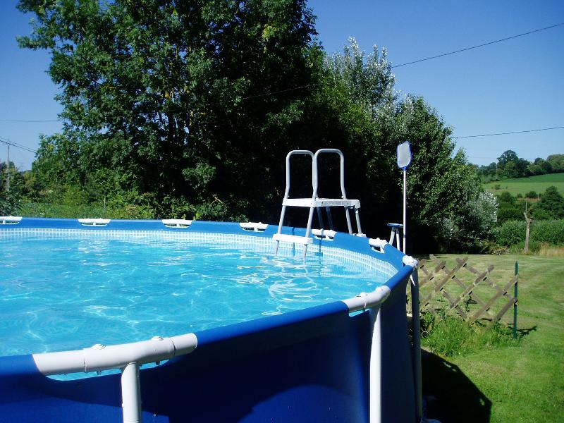 Child secure removable pool ladder