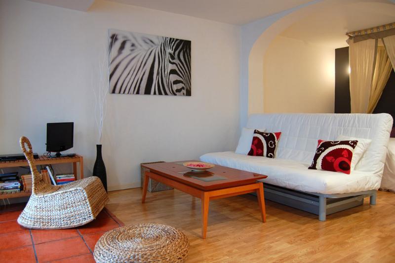 Loft en el centro de Vitoria, holiday rental in Murguia