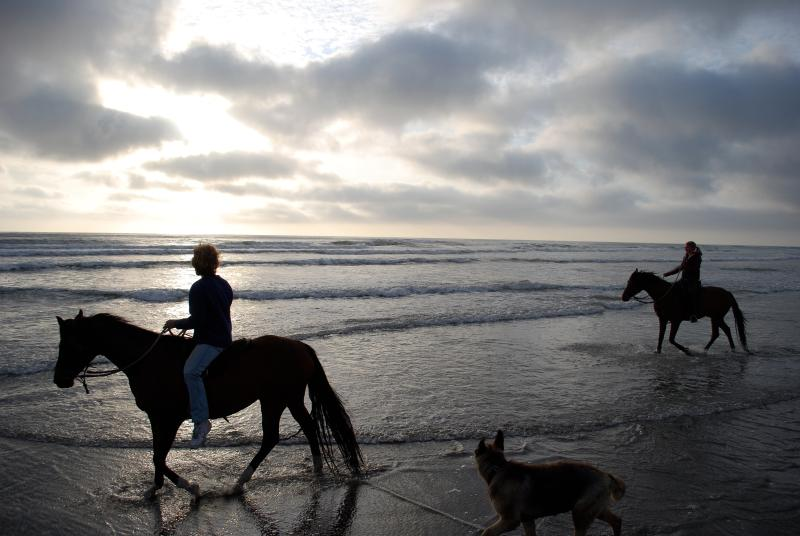 Ride your horses on the beach