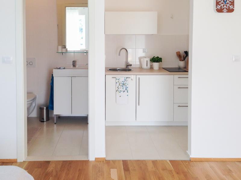 Bathroom and kitchenette