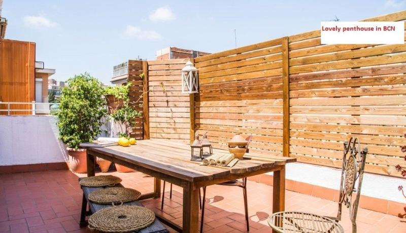 Lovely penthouse with an amazing sunny terrace in Barcelona, holiday rental in Barbera del Valles
